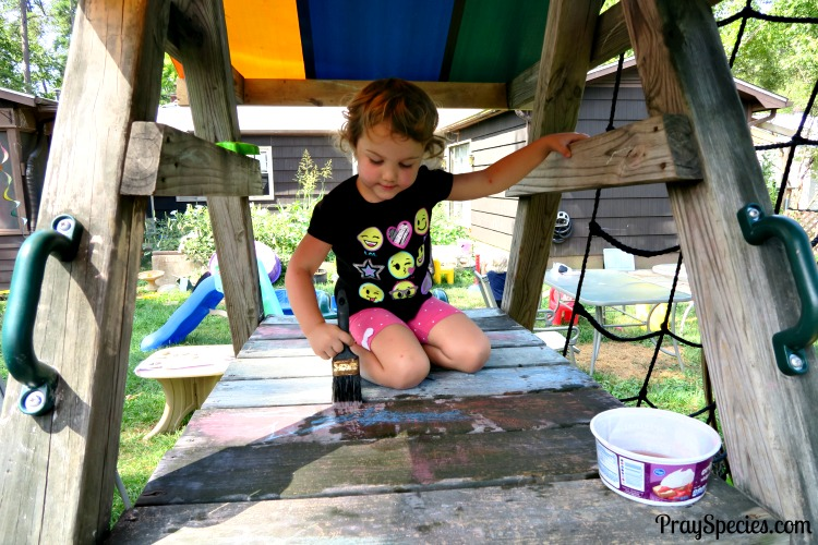 ladybug-painting-backyard-play-gym