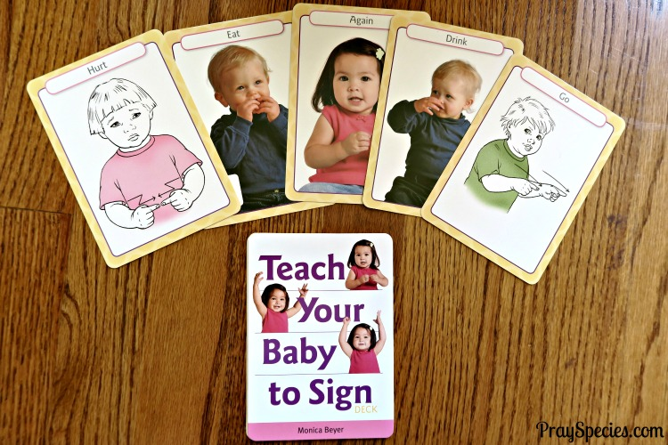 teach-your-baby-sign-language