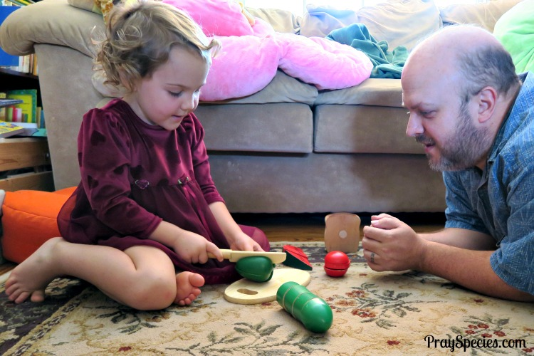 daddy-and-ladybug-playing-restaurant-with-melissa-and-dough-food-set