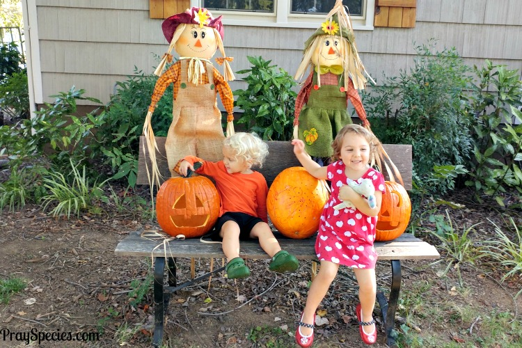visiting-with-pumpkins-and-scarecrows-in-our-front-yard
