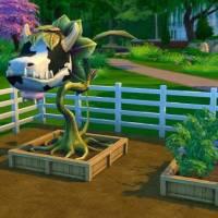 """Садоводство в игре """"The Sims 4"""": тонкости, рекомендации, секреты, обзор"""