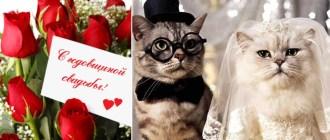 годовщины свадьбы по годам от 20 до 30 лет