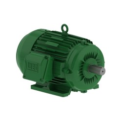WEG W22 Super Premium Efficiency Motors