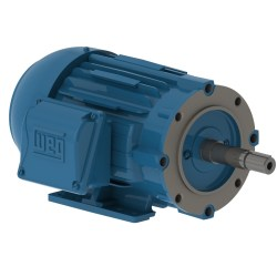 WEG TEFC W22 JM Type - CAST IRON MOTORS
