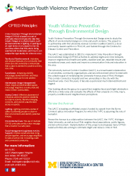 Project Factsheet – YVPC YVPTED