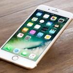 iPhone стал лидером 2017 года по продажам в Санкт-Петербурге: исследование Avito