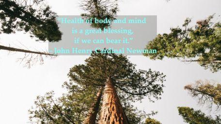 health quote 7