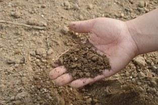 soil-766281__180