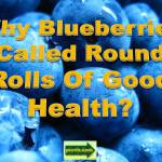 blueberries_health