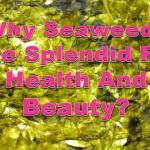 seaweeds_health and beauty