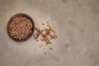 flax-seed, flaxseed