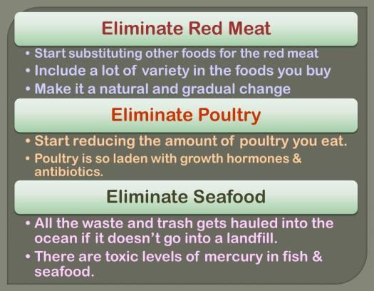 vegetarian diet_2