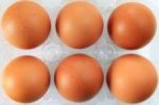 Egg_diet