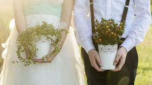 Dans le cas de pacs et de mariage
