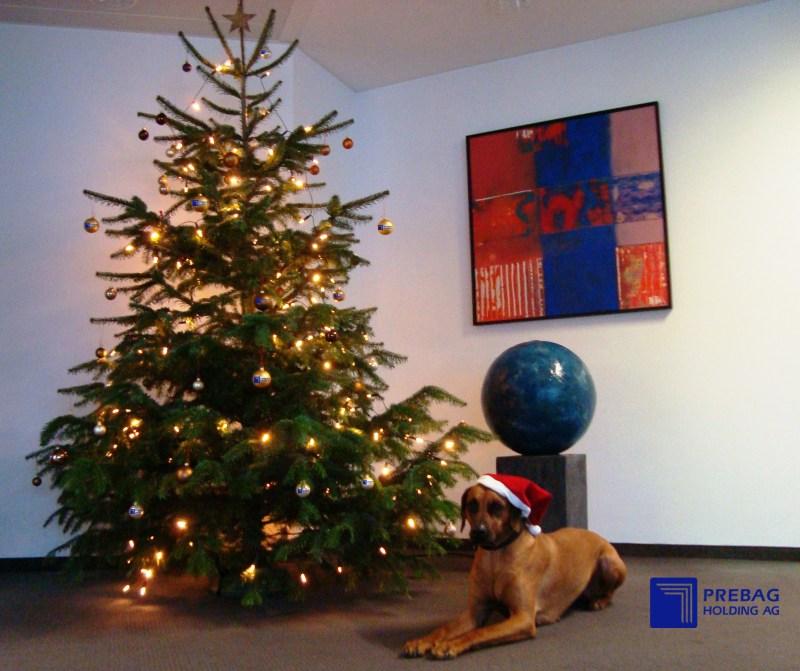 12-15_aktuelles_weihnachtsbild_logokugeln2