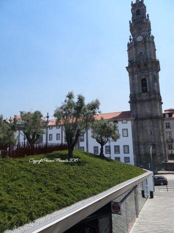 jardim-das-oliveiras-2