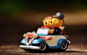 クマのカップルの結婚式