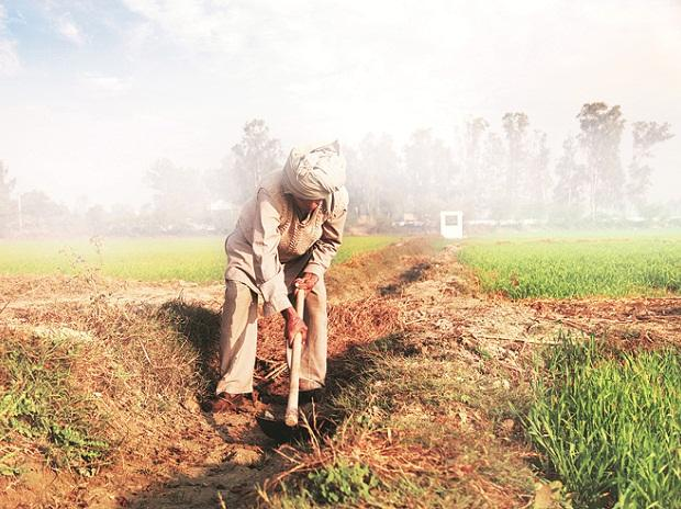 Govt considering NITI Aayog's area-based package for distressed farmers