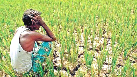 Govt considering Rs 70000 cr spending to pay cash to farmers