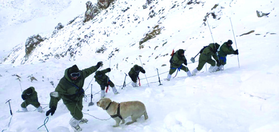 Khardung La avalanche: Search continues to retrieve two more bodies