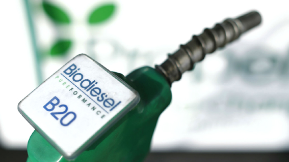Govt allows export of bio-fuels from special economic zones, EoUs