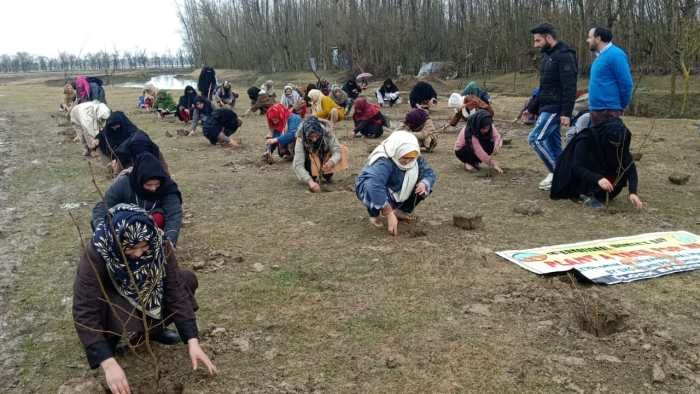 Int'l Women's Day: Plantation drive launched across Bandipora