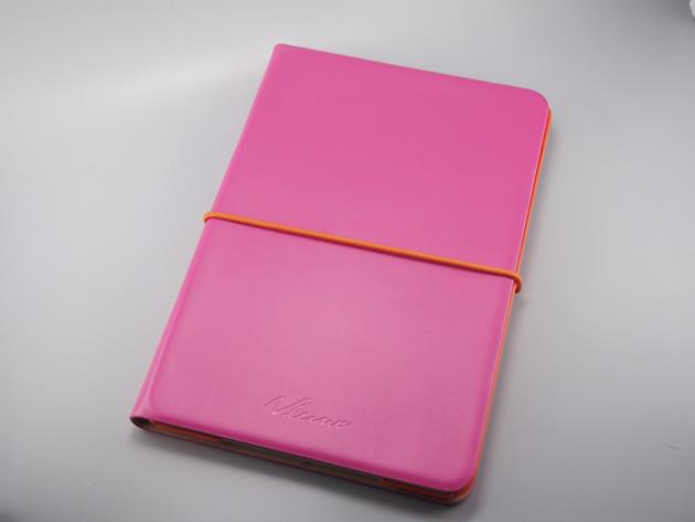 iPadmini20150327-01