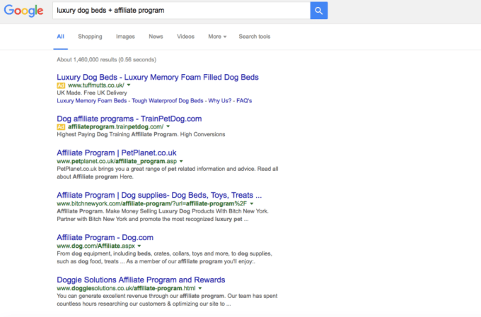 Google Search for Affiliate Programs