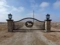 drive gate - horse