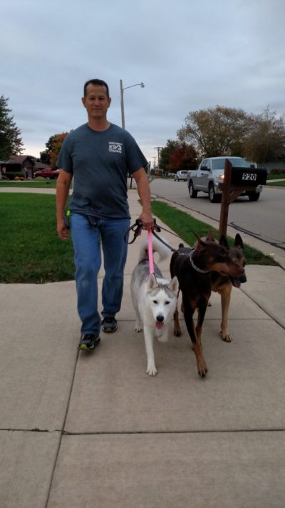 A structured pack walk is a walk that shows you how to properly communicate with your dog in a way that he/she understands using various tools, your energy and body language.