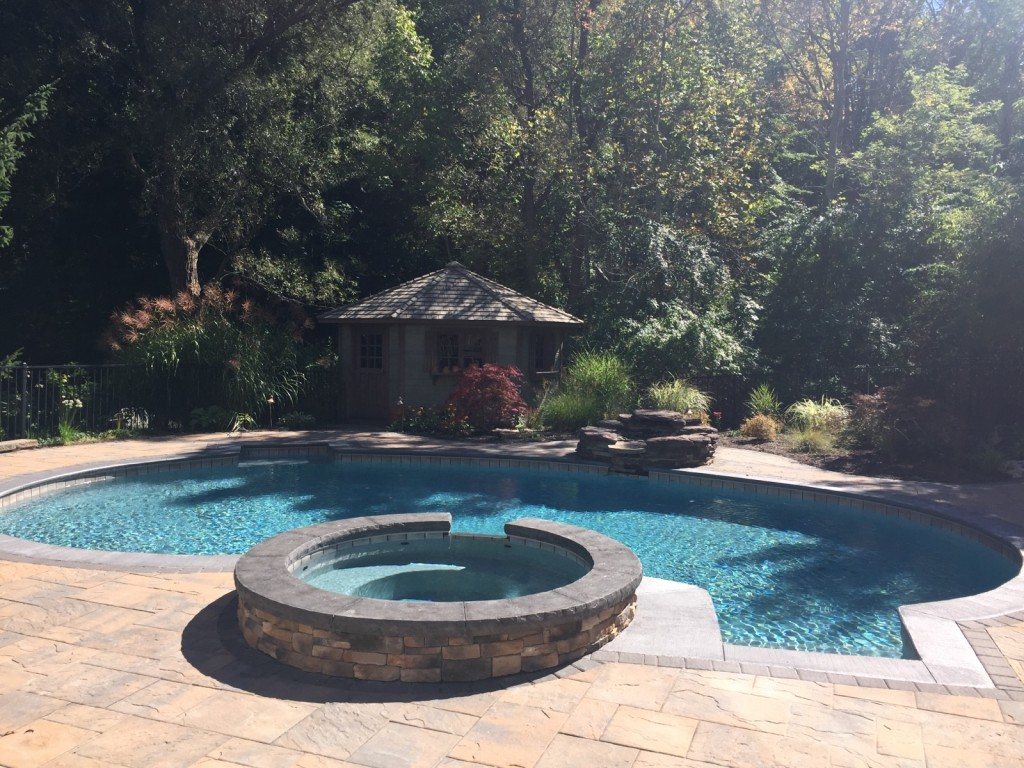 inground pool, pool and spa combo, natural pool, precision pool and spa design, NY, Rochester