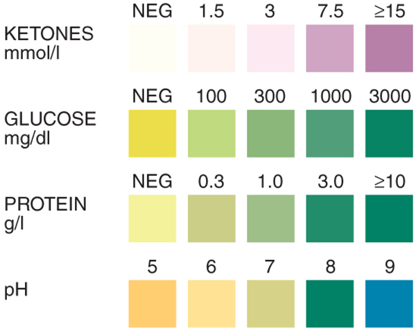 Urine analysis test strip precision laboratories for Table 6 simulated urine protein test