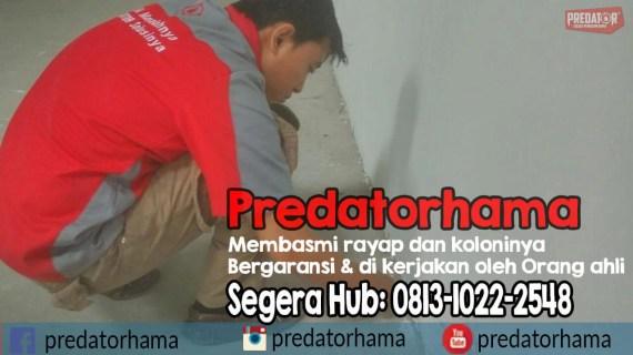 Anti Rayap Jakarta Bergaransi I Predatorhama I Hub:0813-1022-2548
