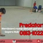 Jasa Anti Rayap Bergaransi Hub : 0813-1022-2548