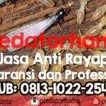 Anti Rayap Profesional I Predatorhama I Hub : 0813-1022-2548