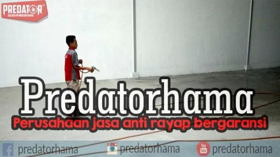 Jasa Anti Rayap Alami Jakarta Hub : 0813-1022-2548