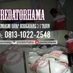Jasa Anti Rayap Alami Depok I Hub: 0813-1022-2548