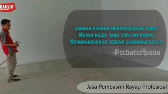 Perusahaan Jasa Anti Rayap I Hub : 0813-1022-2548