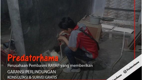 Jasa Basmi Rayap Bogor