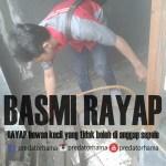 Jasa Tukang Basmi Rayap Bintaro
