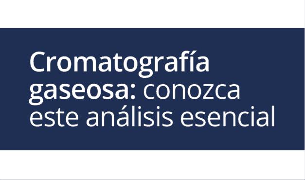 Cromatografía Gaseosa: conozca este análisis esencial