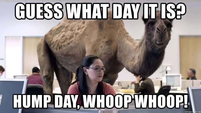 33 Happy Hump Day Meme Wishes And Images – Preet Kamal