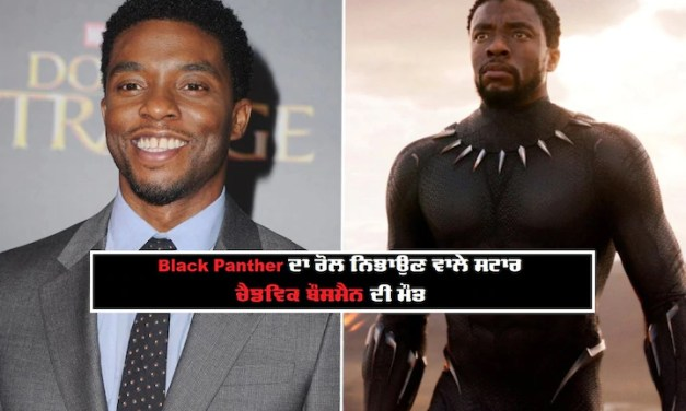 Chadwick Boseman's old interview where he hinted at cancer battle goes viral: 'One day I'll live to tell the story'