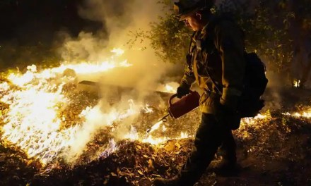 California wildfires among largest in state's history: What we know so far