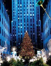 new-york-city-holiday-lights-tour-in-new-york-city-21