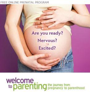 online-prenatal-program