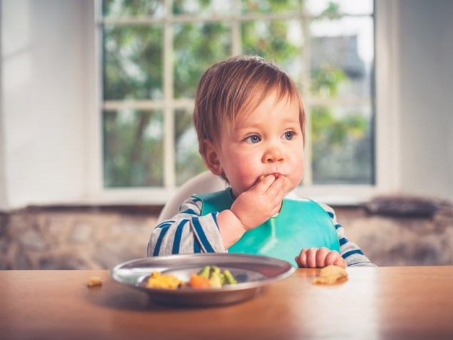 Baby sitting at the table and eating dinner using hands picking food from a child-sized plate