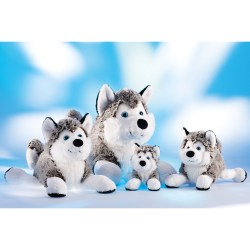 Schlittenhund Husky