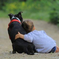 Домашните миленици имаат благотворно влијание на луѓето