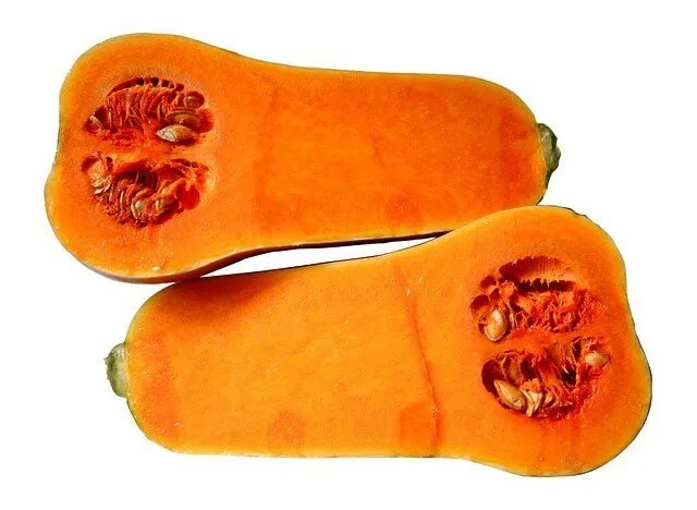 winter squash butternut
